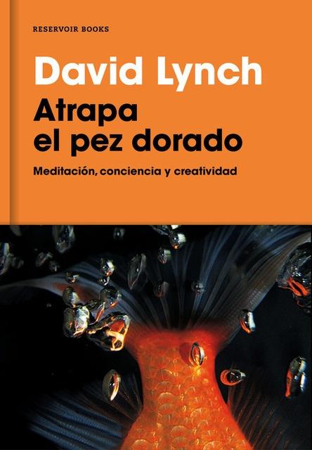 59491-ATRAPA-AL-PEZ-DORADO-9788416709014