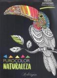 88007-ARTERAPIA-NATURALEZA-9789873202698
