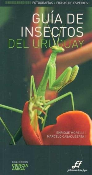 34368-GUIA-DE-INSECTOS-DEL-URUGUAY-9789974835863